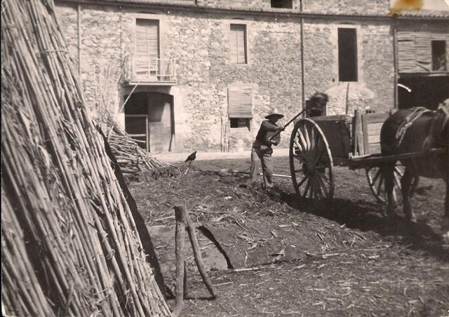 1957_00_00_Agricultura_carregant el carro_000663