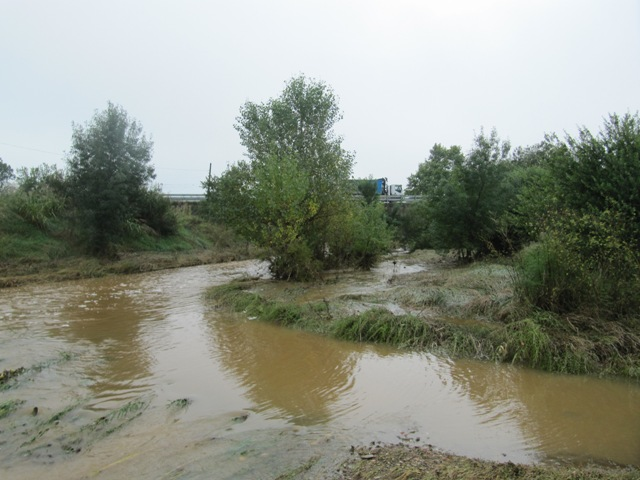 29-09-2014_riera de Sant Martí_000648