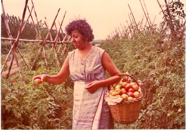 1980_00_00_d_Agricultura_001053