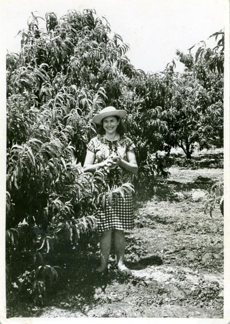 1960_00_00_d_Agricultura_001436